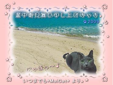2009_8_02s.jpg